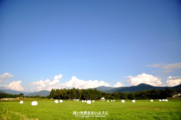 DSC_0609-3.jpg